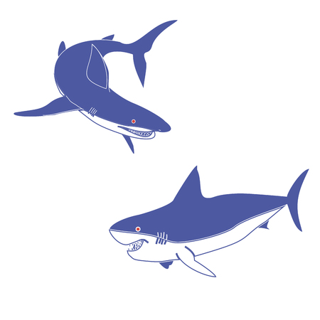 gills: Vector illustration of two blue sharks.Insulated drawing, consists of predators, sea, ocean, fin, tail, red eyes, gills, teeth, jaw, close-up on white background.Icon for cartoon, magazine, article, art