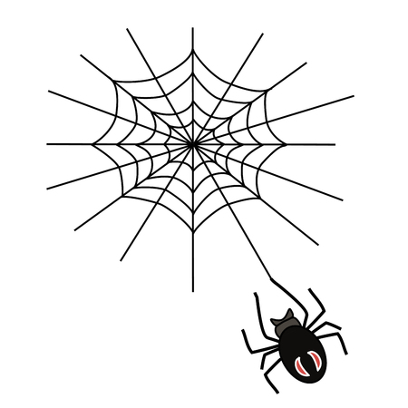 Vector illustration of logo spider weaves a web