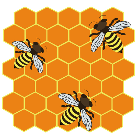 honeyed: Vector illustration of logo three striped bees. Illustration