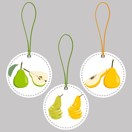 Fruit pear Illustration