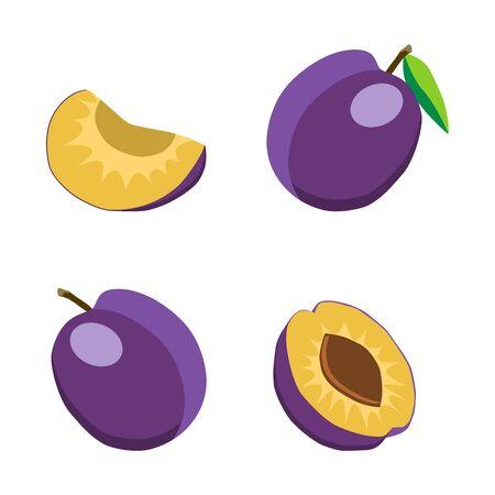 plum: plum Illustration