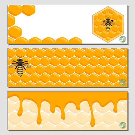 bees and honey Vector Illustration