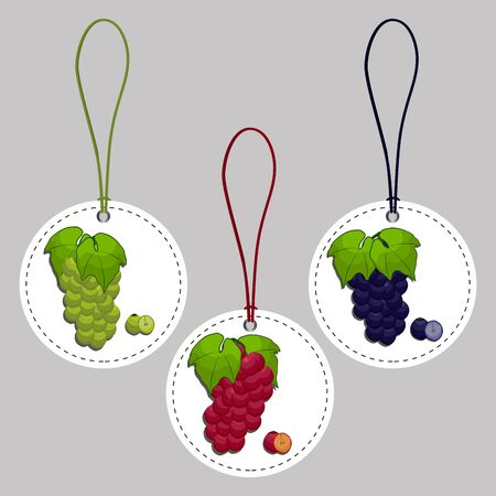 isabella: Abstract vector illustration of logo for set grapes