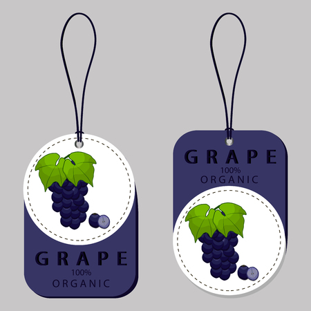 Abstract vector illustration of logo for set grapes