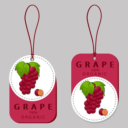 vector illustration of logo for set grapes