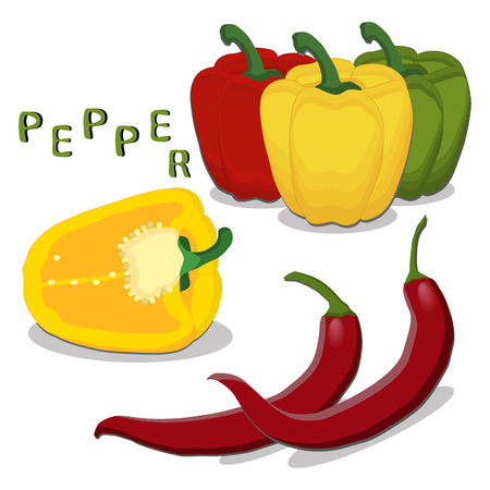 vector illustration  for the theme of the pepper Illustration