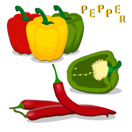 vector illustration for the theme of the pepper