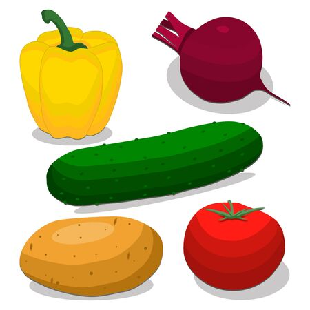 vector illustration of logo for the theme of the vegetables