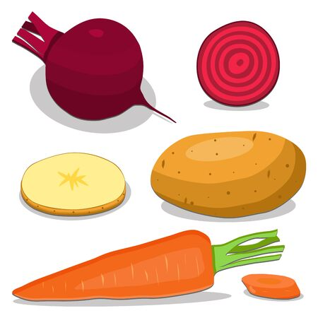 vector illustration  for the theme of the vegetables