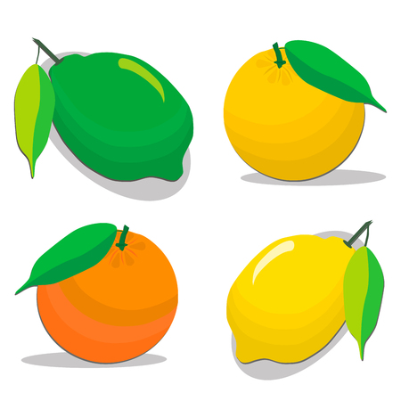 Abstract vector illustration logo for set whole ripe citrus fruit orange, lemons, lime, grapefruit, green stem leaf, cut sliced.Citrus drawing consisting of peel fruits, ripe sweet food.Eat fresh citruses.