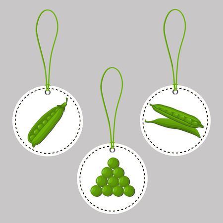 Abstract vector illustration logo for whole ripe vegetables round peas with green stem leaf, cut sliced ??on background.Pea drawing consisting of tag label, peel pip, twine rope, ripe food.Eat fresh Peas.