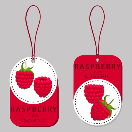 vector illustration of logo for the theme of the red fruit raspberry