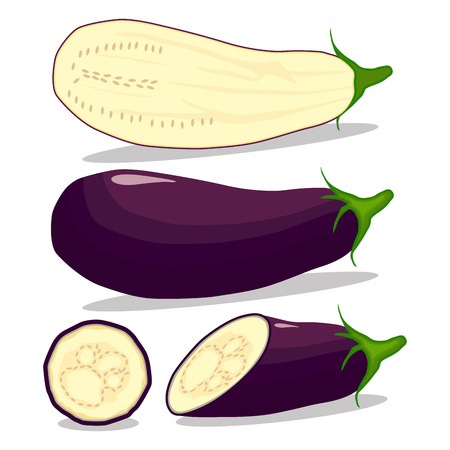 Vector illustration logo for whole ripe vegetable purple eggplant, with green stem, cut sliced, close-up background.Eggplant drawing pattern consisting of tag label bow, aubergine ripe.Eat fresh eggplants