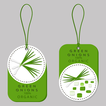 Vector illustration logo for whole ripe vegetable bitter onion, with green stem, cut sliced, close-up background.Onion drawing pattern consisting of tag label bow, bittersweet taste food.Eat fresh onions.