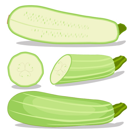 Vector illustration logo for whole ripe vegetable squash zucchini, with green stem, cut sliced, close-up background.Zucchini drawing pattern consisting of tag label bow, squash ripe.Eat fresh zucchinis. Illustration