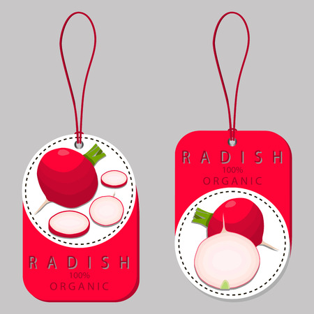 Vector illustration logo for whole ripe vegetable red radish, green stem, cut sliced, close-up background.Radish drawing pattern consisting of tag label bow, peel pip ripe sweet food.Eat fresh radishes.