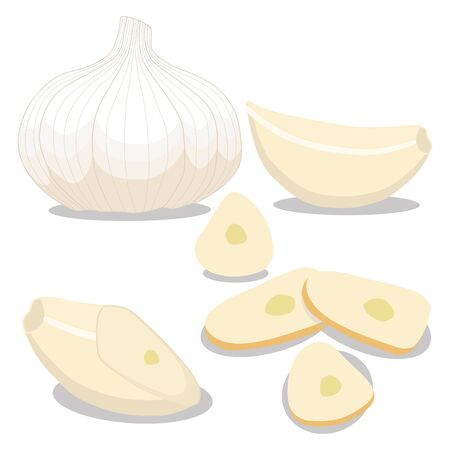Vector illustratie logo voor hele rijpe plantaardige bittere gele knoflook, gesneden gesneden, close-up achtergrond. Synthetische tekening patroon bestaande uit tag label boog, bitterzoete smaak voedsel. Eet verse bittere garlics