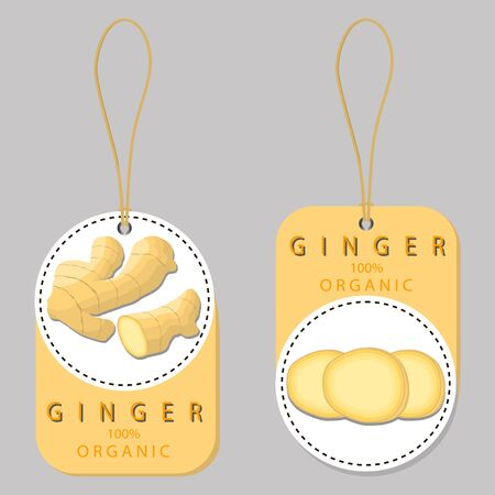 Vector illustration logo for whole ripe spice herb seasoning yellow root ginger, cut sliced.Ginger drawing pattern consisting of tag label bow, peel zinziber, pip ripe sweet food.Eat fresh roots gingers.