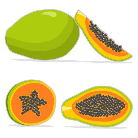 Vector illustration logo for whole ripe fruit papaya with green stem leaf. Illustration
