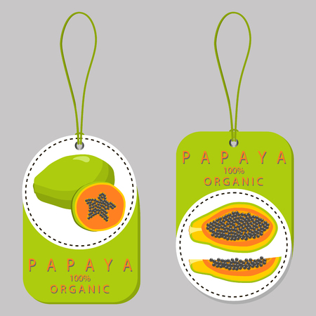 motouz: Vector illustration logo for whole ripe fruit papaya with green stem leaf. Ilustrace