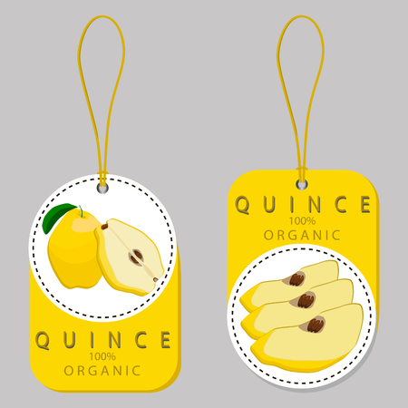 Vector illustration logo for whole ripe yellow fruit quince, green stem leaf,sliced pear, background.Pattern consisting of natural sweet food.Eat fresh tropical fruits quinces to health.