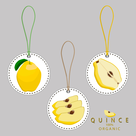 Vector illustration logo for whole ripe yellow fruit quince, green stem leaf, pear, background.Pattern consisting of natural sweet food.Eat fresh tropical fruits quinces to health.