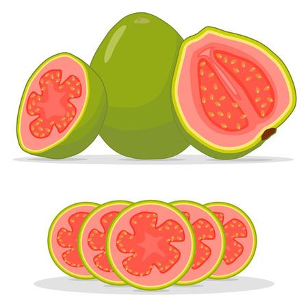 丸ごと完熟フルーツ赤グアバのベクトル図