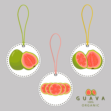Vector illustration for whole ripe fruit red guava