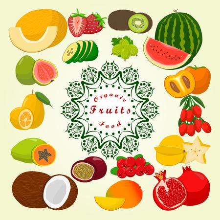 Abstract vector illustration logo: melon strawberries kiwi watermelon Illustration