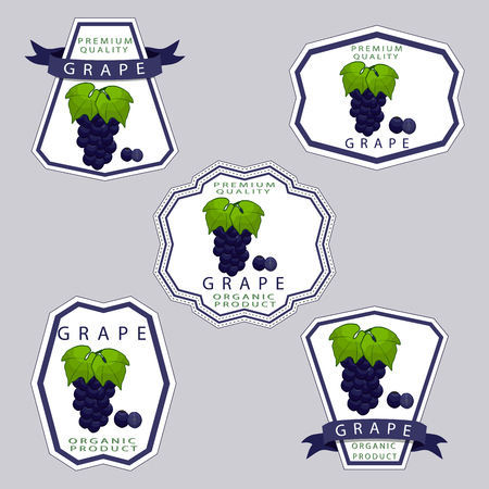 Abstract vector illustration logo for whole ripe berry grape with green stem leaf cut sliced ??on background.Grape drawing composition of tag label peel pip ripe sweet food wine.Eat fresh bunch of grapes