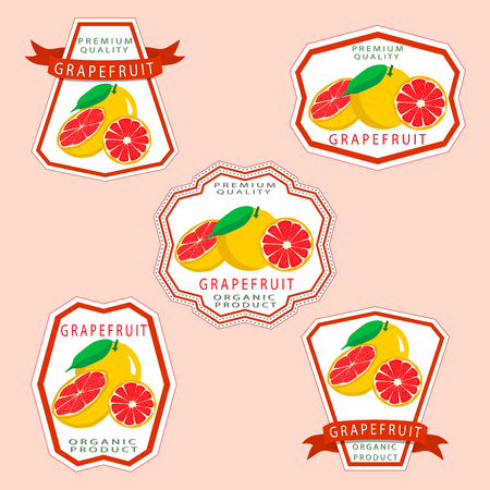 Abstract vector illustration logo for whole ripe fruit orange grapefruit citrus cut sliced.Grapefruit drawing set of tag label bow peel fruits pip ripe sweet food.Eat fresh oranges grapefruits.
