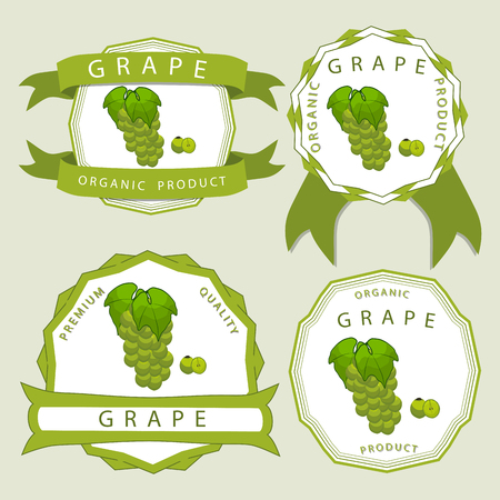 Vector illustration logo for whole ripe fruit colored grape with green stem leaf cut sliced. Grape drawing pattern. Illustration