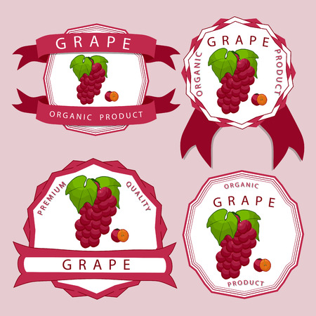 Vector illustration logo for whole ripe fruit colored grape with green stem leaf cut sliced. Grape drawing pattern. Eat fresh grapes health. Illustration