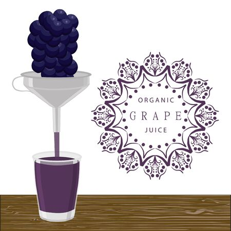 Vector illustration of freshly squeezed whole ripe fruit.