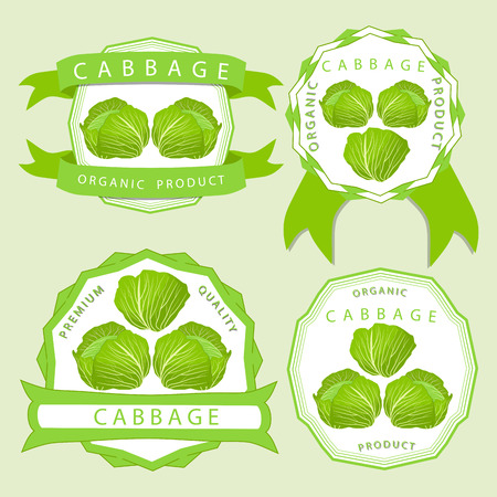 cut up: Vector illustration logo whole ripe vegetable red cabbage, with green rolls leaf, cut closeup background.Cabbage drawing pattern set of tag label fruit, ripe sweet food.Eat fresh head cabbages.