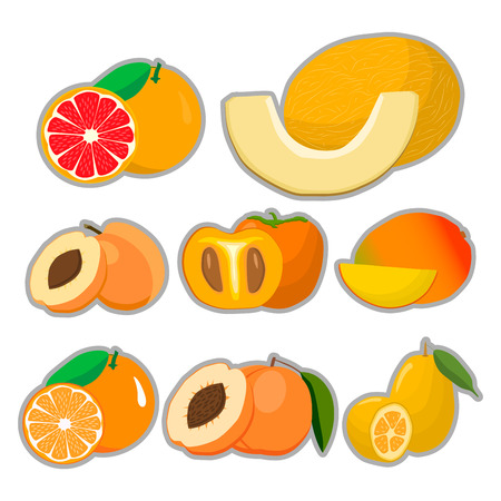 Abstract vector illustration logo for whole ripe fruit melon apricot peach green stem cut sliced.