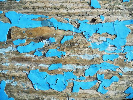 worn structure: The photo shows a background of a texture of a tree closeup of a fracture.