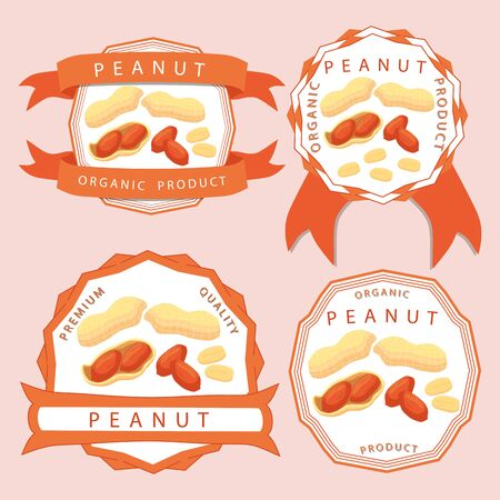 Abstract vector illustration logo whole ripe brown peanut nut, cut sliced, product background.  イラスト・ベクター素材