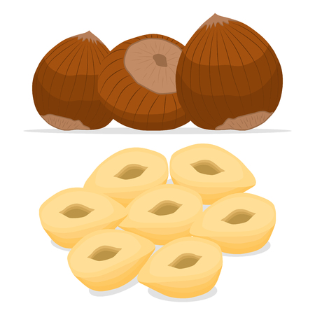 Abstract vector illustration logo whole ripe brown nut, cut sliced ??product nuts background.