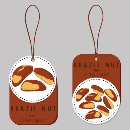 Abstract vector illustration logo whole ripe brown nut, cut sliced, product brazil background.  イラスト・ベクター素材