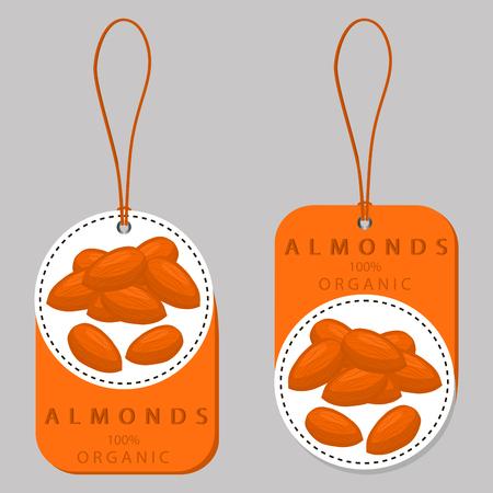 抽象的なベクトル イラスト ロゴ丸ごと完熟茶色ナット、カット スライス、製品のブラジルの背景。