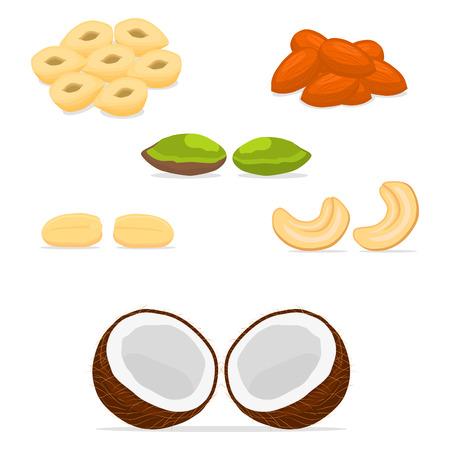 Vector illustration icon for cashew, hazelnut, brazil nut, pistachio, peanut, coconut, almond. Nut consisting of nutley,nutshell.Eat cashews,hazelnuts,brazil nuts, pistachios,peanuts,coconuts,almonds.