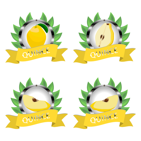 Abstract icon illustration for whole ripe fruit colorful quince. Ilustracja