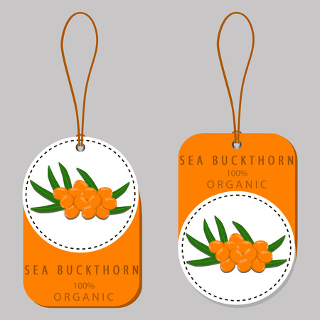 Abstract vector icon illustration logo for whole ripe berry yellow sea buckthorn, green leaf. Sea Buckthorn pattern consisting of label natural food, branch. Eat raw berries seas buckthorns on health.