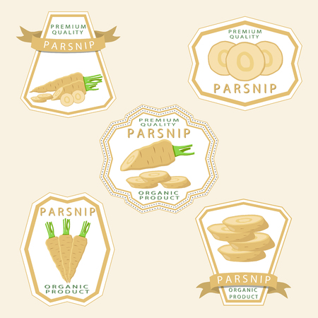 Abstract vector icon illustration for whole ripe vegetable yellow parsnip, sliced carrot on background. Parsnip pattern consisting of label vegetables, raw sweet food carrots. Eat fresh parsnips. Ilustração