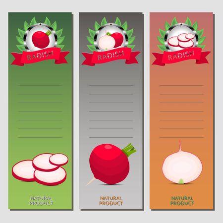 Vector icon illustration logo for whole ripe vegetable red radish, cut half carrot on background. Radish pattern consisting of label vegetables, slice raw sweet food carrots. Eat fresh radishes. Illustration