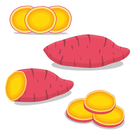 Abstract vector icon illustration logo for whole vegetable sweet potato, sliced baked foods. Potato pattern consisting of ripe boiled stewed food, steamed fries, raw yam. Sweet vegetables potatoes. Illustration