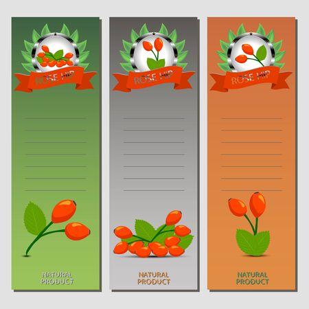 Ilustração abstrata do ícone do vetor para o ramo maduro inteiro dos quadris cor-de-rosa com a folha verde no fundo. Teste padrão de Rose Hip que consiste na etiqueta da baga, rosehip doce cru. Coma os quadris rosas vermelhas frescas para a saúde