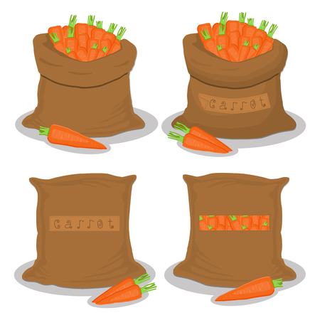 Vector illustration for bags filled with vegetable root carrot, storage in sacks. Carrot pattern consisting of ripe food, raw product on open Sack. Tasty fruit carrot from eco sack, full baggy bag.