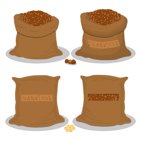 Vector illustration for bags filled with nuts brown hazelnut, storage in sacks. Hazelnut pattern consisting of ripe food, raw product on open Sack. Tasty fruit hazelnut from eco sack, full baggy bag.
